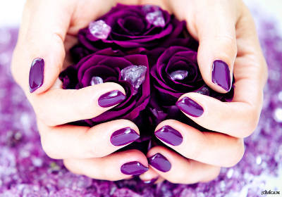 19 Ideas of Purple Roses Wallpaper Background  Greening